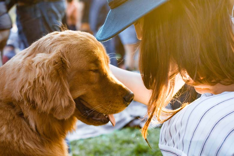 Pet Sitter and Dog Together Perth